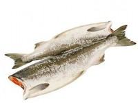 Эко-рыба от интернет-магазина Эко-рыба